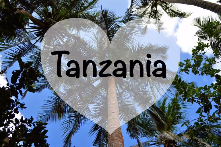 5 Ragioni per fare un Viaggio in Tanzania