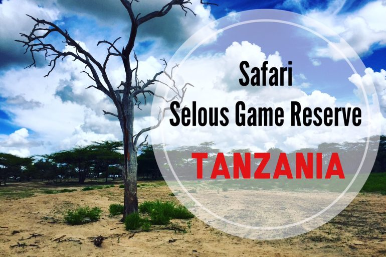 Safari al Selous Game Reserve