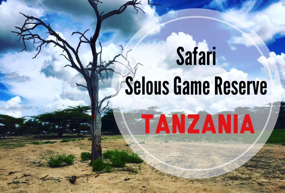 Safari al Selous Game Reserve