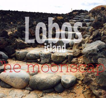 L'isola di Lobos