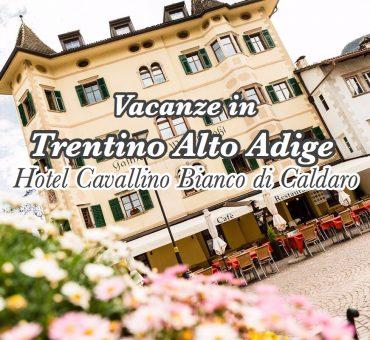 VacanzeinAltoAdige&Soggiornopressol'HotelCavallinoBianco
