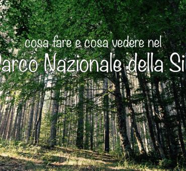 Visitare il Parco Nazionale della Sila in Calabria – tutte le info
